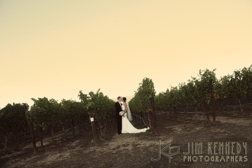 V. Sattui Winery Wedding, Sattui Wedding, Napa Valley Weddings, V. Sattui Winery