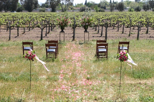 Napa Elopements, V. Sattui Elopements, Petite Weddings, V. Sattui Winery, V. Sattui Weddings